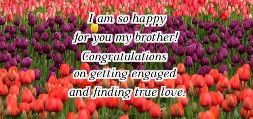 Engagement Wishes For Sister Sister Engagement Quotes